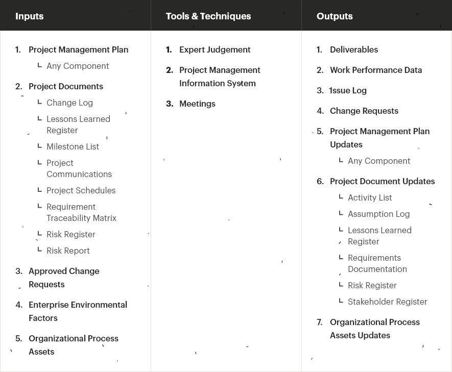 Directing and Managing the project itself